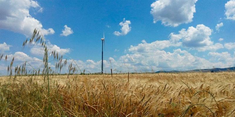 Statistiche mini eolico giugno